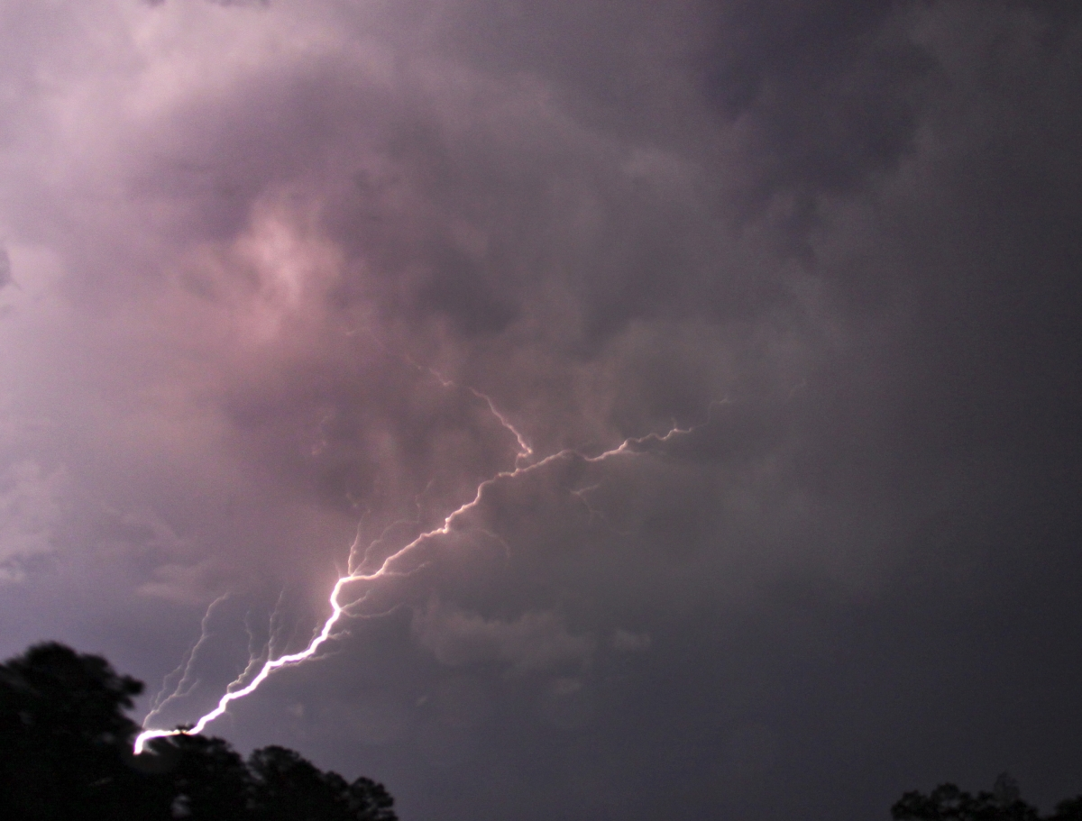 Bihar lightning strikes: Death toll climbs to 92, 10 districts in red zone amid thunderstorms