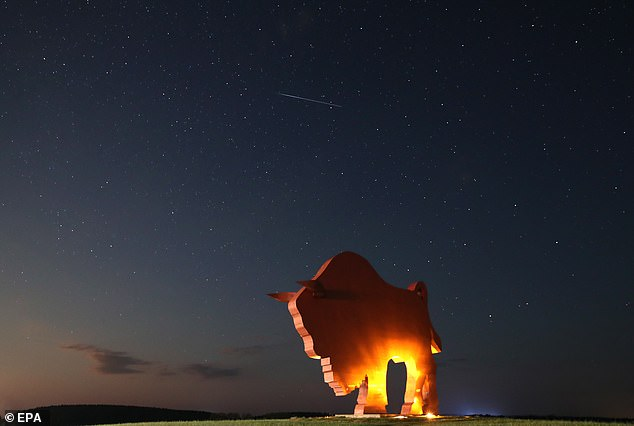 Stunning nature in action: A meteor of the Perseids meteor shower burns up in the atmosphere behind a huge statue of a bison near the village of Petkovichi, Belarus, 12 August 2019