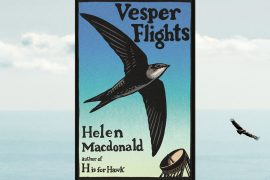 Helen Macdonald's Vesper Flights review: Another soaring memoir