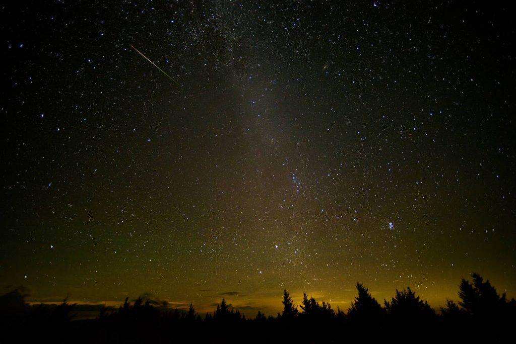 Still want to catch a glimpse of the Perseid Meteor Shower? There is still a chance to watch!