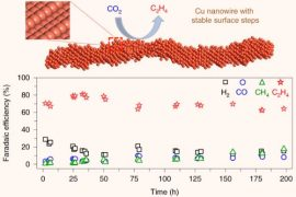 Copper represents an effective catalyst in reducing carbon dioxide to hydrocarbons or oxygenates, but it is often plagued by a low product selectivity and limited long-term stability. Choi et al report that copper nanowires with rich surface steps exhibit a remarkably high Faradaic efficiency for ethylene that can be maintained for over 200 hours. Image credit: Choi et al, doi: 10.1038/s41929-020-00504-x.
