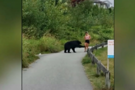 Woman who was swatted by bear in Metro Vancouver says she wasn't posing for selfie