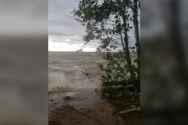 Southern Manitoba wind storm destroys power lines and trees