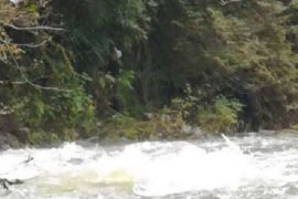 One man dead after Cleveland Dam opens during maintenance, flooding Capilano River