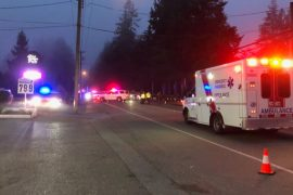 Watchdog called to officer-involved shooting in Langley, B.C.