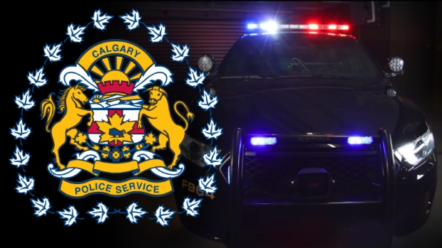 Calgary police officer hit and killed during New Year's Eve traffic stop