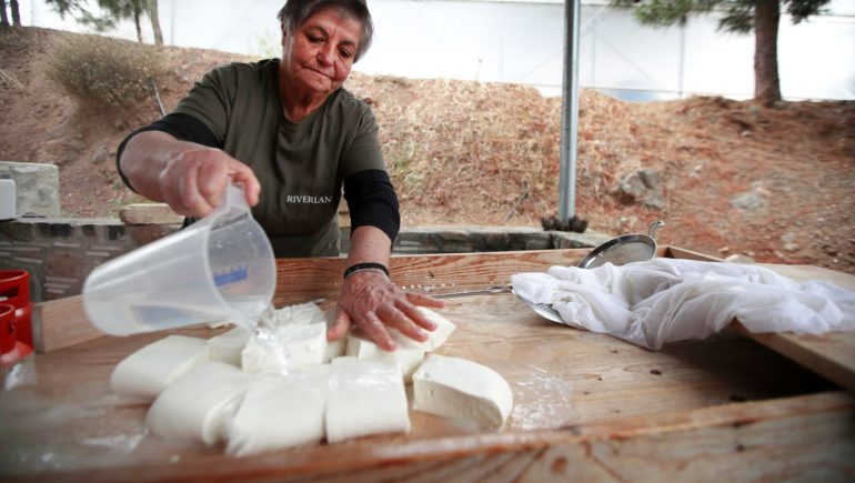 Halloumi Cheese: Cyprus blocks Sita trade deal between EU and Canada