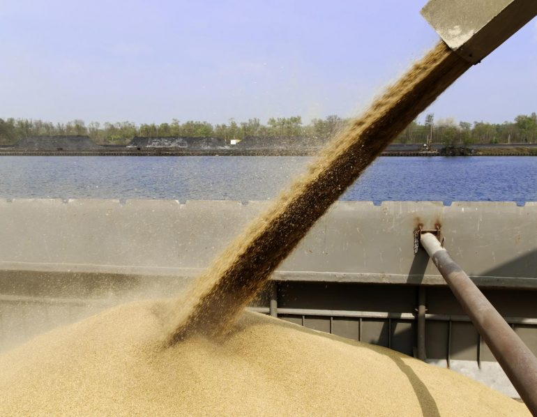 This is why barley is extremely rare and expensive - and what China has to do with it