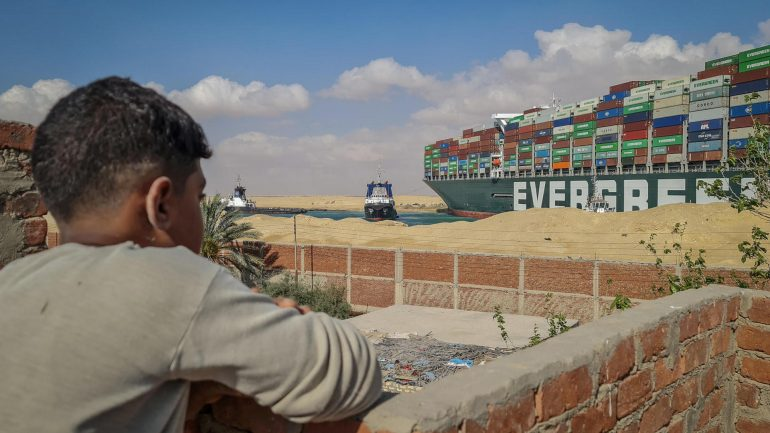 130,000 sheep trapped in Suez Canal