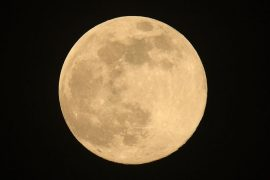 Scientists want to make a doomsday on moon science