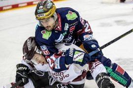 Simon Gnip returns to Bavaria: Neurotinger changes ERC Ingolstadt