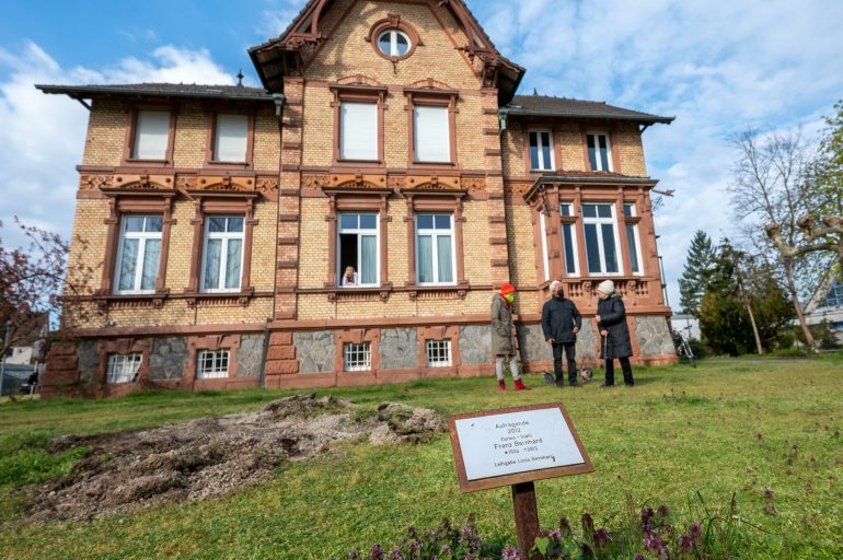 """Art in a Public Place in Jockgrim: The """"Towering Forest"""" in front of the Town Hall has gone"""