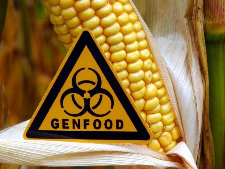 Schultz and Klöckner disagree on new genetic engineering. Fie Press