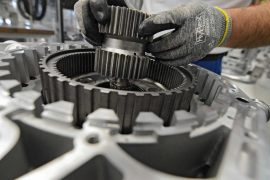 Bruxal region plant manufacturers win against large corporations