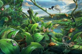 Ecosystem: Amber reveals species-rich rainforest from the Miocene