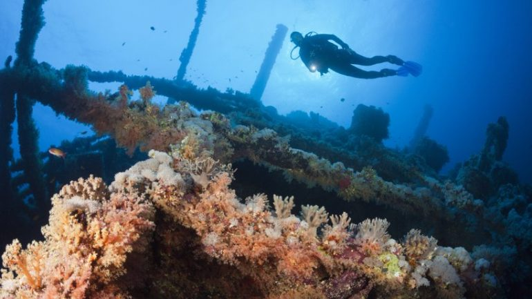 Science: Divers discovered - now understand what!