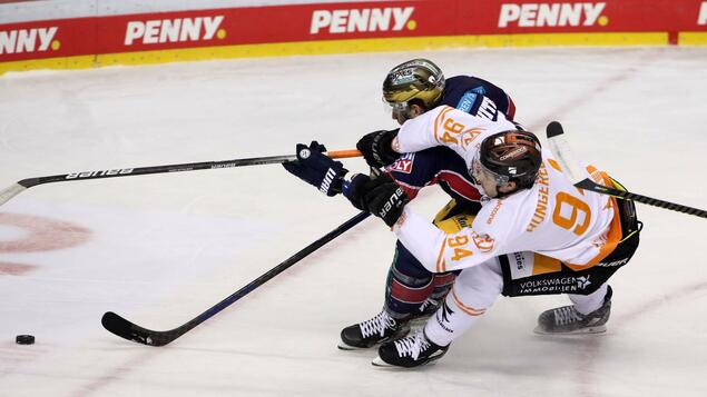 Slightly different final series for the German Ice Hockey Championship: only bars will be tight - games