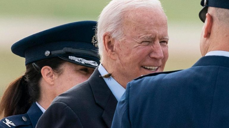 """He just caught me"" - cicada attack on Joe Biden"