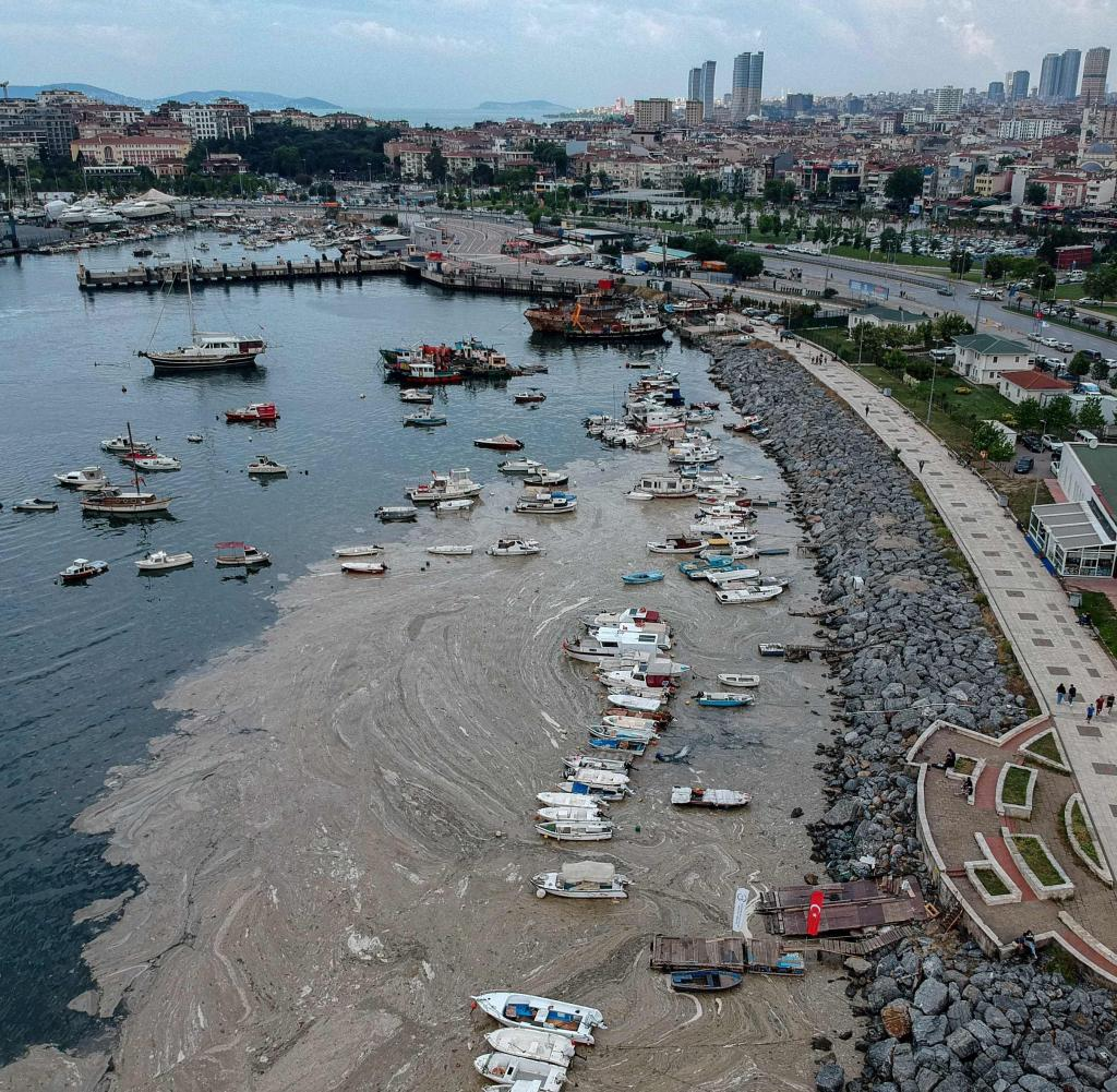 The Turkish Sea of Marmara is infested with a mud plague caused by algae.
