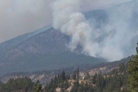 Canada: Lightning sets forest fires after heat wave
