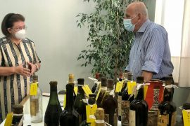 Former royal palace in Greece: hundreds of valuable wine bottles discovered