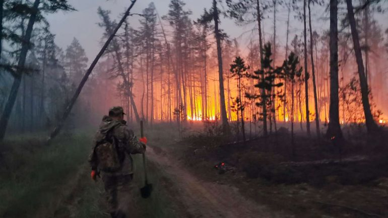 Forest fires are getting worse in Russia, the smoke reaches America