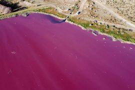 Argentina: Chemicals Color Corfo Lagoon Pink