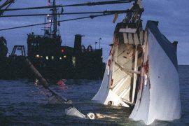 """Estonia"" sinking: new investigation into the wreckage begins"