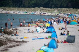 Vibration alert in the Baltic Sea - a case of infection    free Press