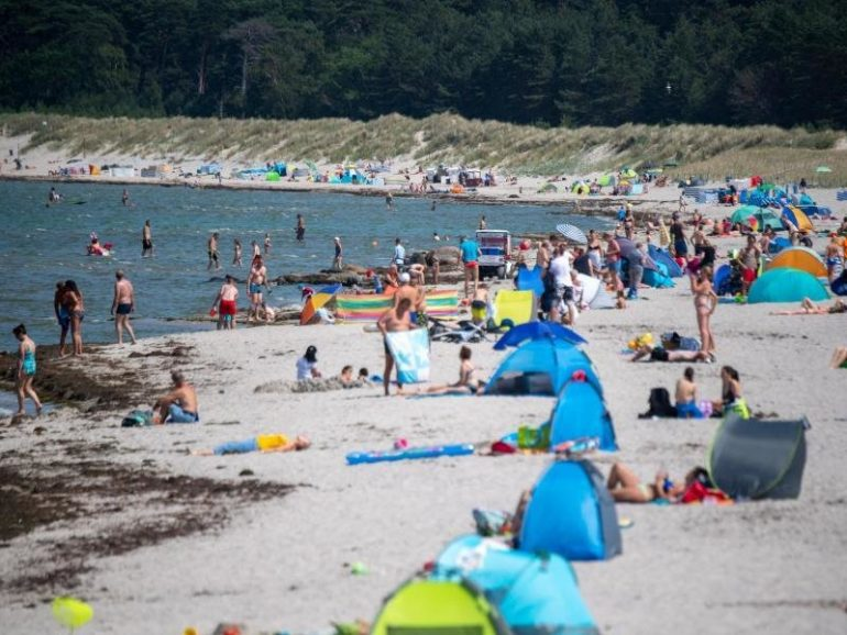 Vibration alert in the Baltic Sea - a case of infection |  free Press