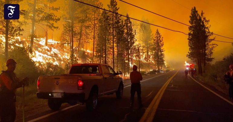 Wildfires in Canada and the United States: Emergency in the West