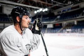 Ice Tigers get second Ustorf - Ice Tigers