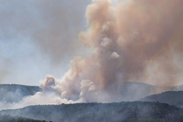 Forest fires in France: One dead in a massive forest fire near Saint-Tropezzo