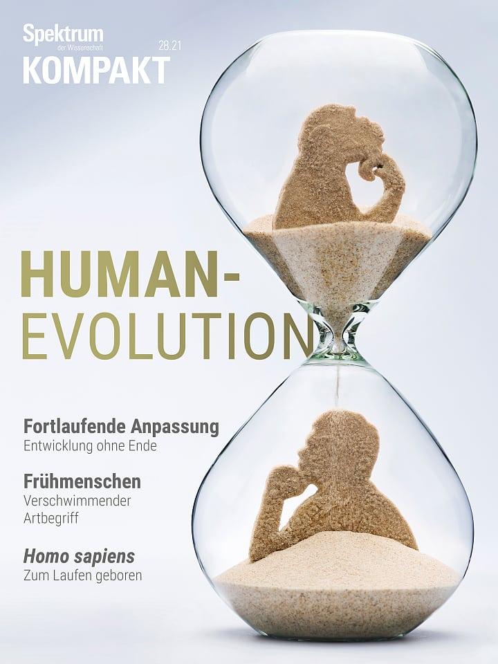 Spectrum Compact: Human Evolution - The Origin of Modern Man