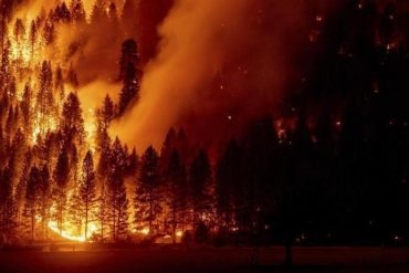 Wildfires cause record emissions in the Northern Hemisphere