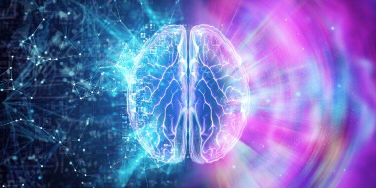 3d illustration of brain