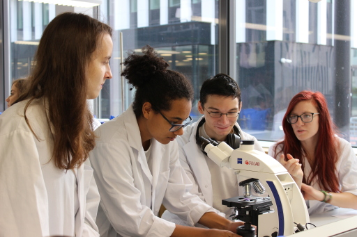 """""""Sparkling Science 2.0"""" leads youth to research"""